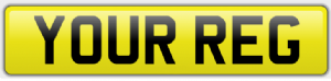 Rear Car Number/Registration Plate